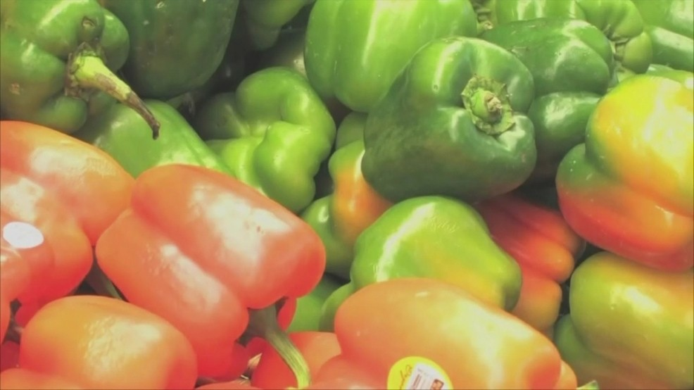 Usda Approves Early Release Of September Snap Benefits Ahead